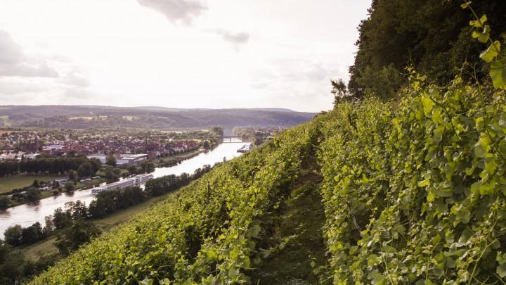 Erlenbach am Main, Spessart-Mainland, Bavaria, Germany